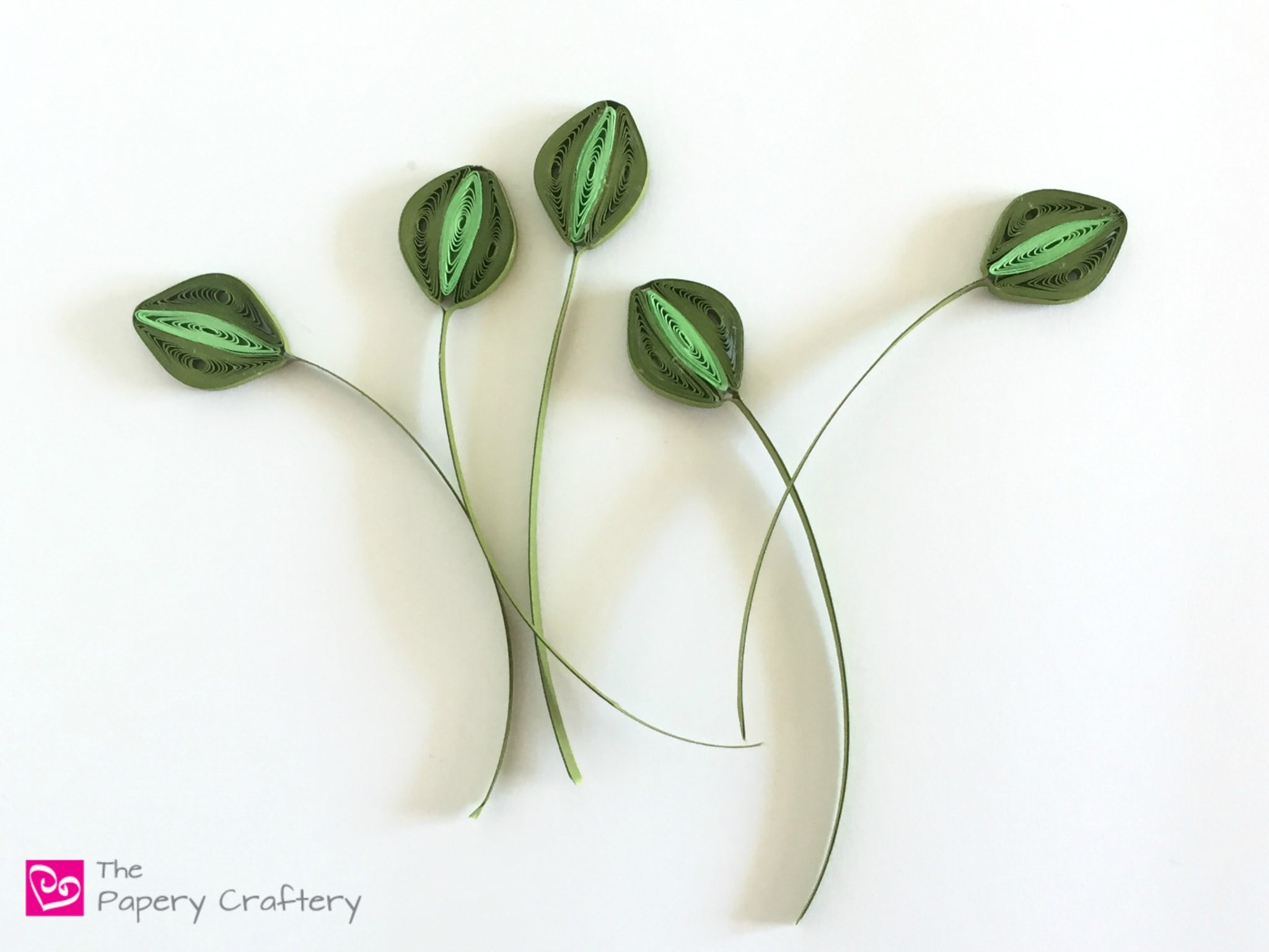 5 More Types of Quilling Paper Greenery ~ Dress up your quilled flowers with more complex leaves and greens || www.thepaperycraftery.com